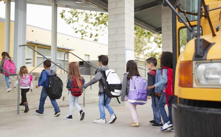 CNE diz que ensino a distância será necessário até 2021, confira!